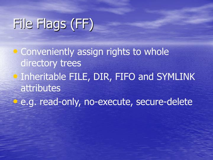 File Flags (FF)