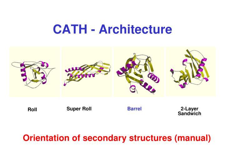 CATH - Architecture