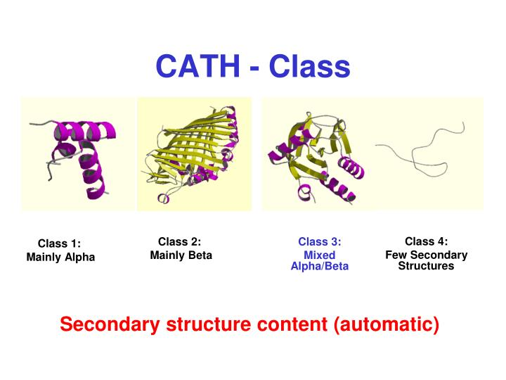 CATH - Class
