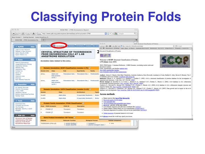 Classifying Protein Folds