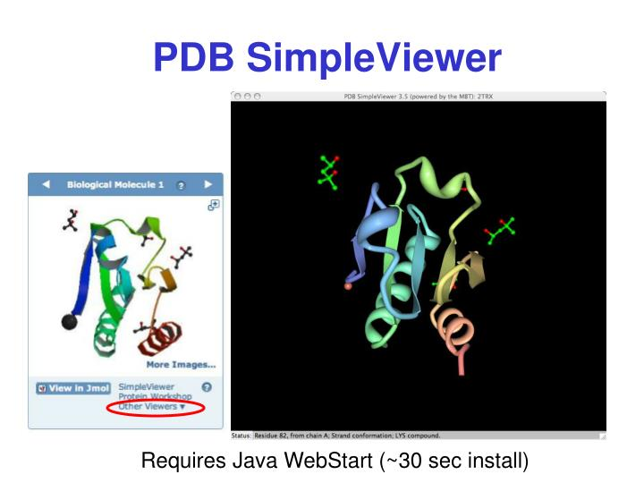 PDB SimpleViewer