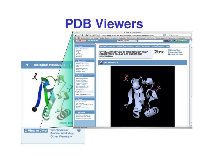 PDB Viewers
