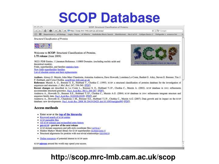 SCOP Database