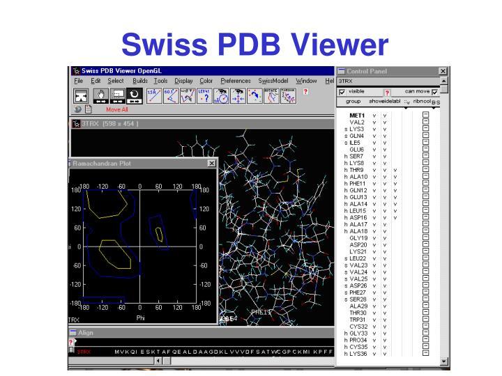 Swiss PDB Viewer