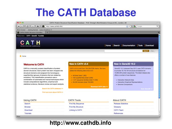 The CATH Database