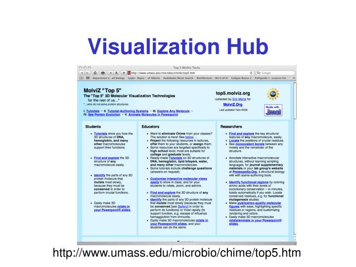 Visualization Hub