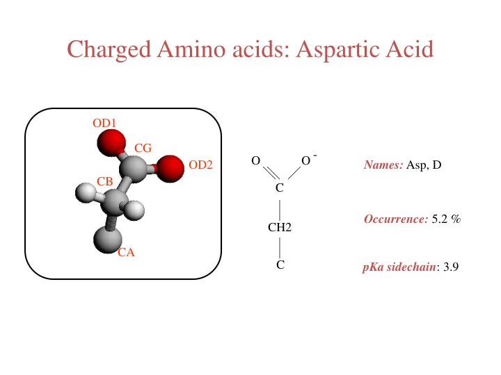 Charged Amino acids: Aspartic Acid