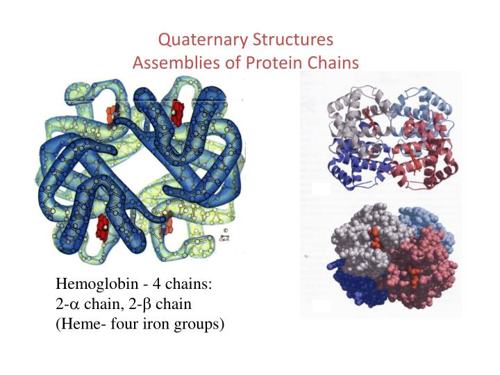 Quaternary Structures