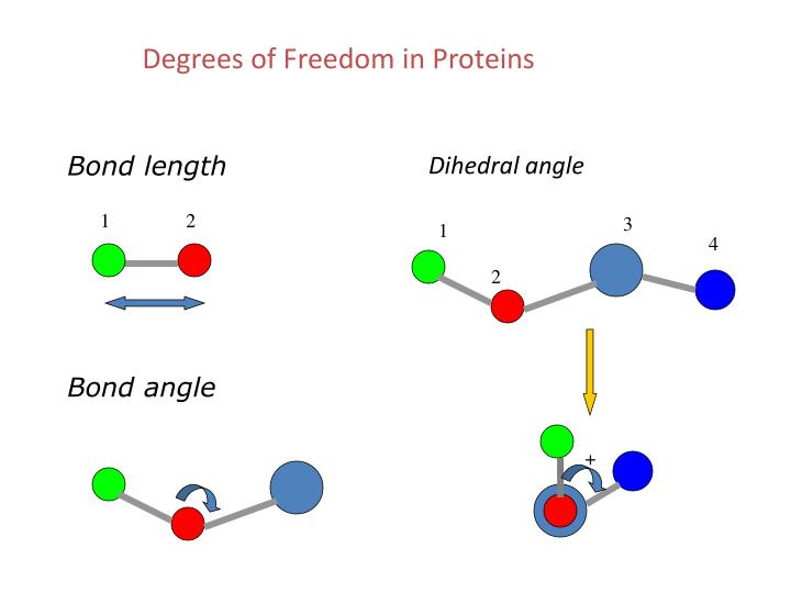 Degrees of Freedom in Proteins