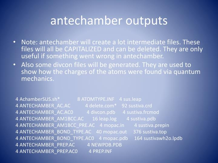 antechamber outputs