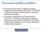 partenariato pubblico pubblico