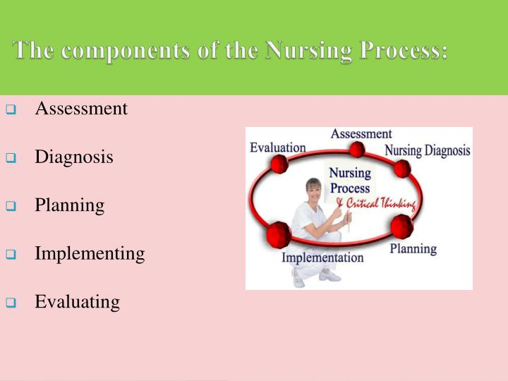 The components of the Nursing Process: