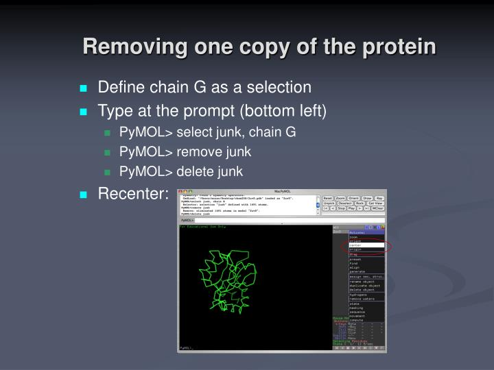 Removing one copy of the protein