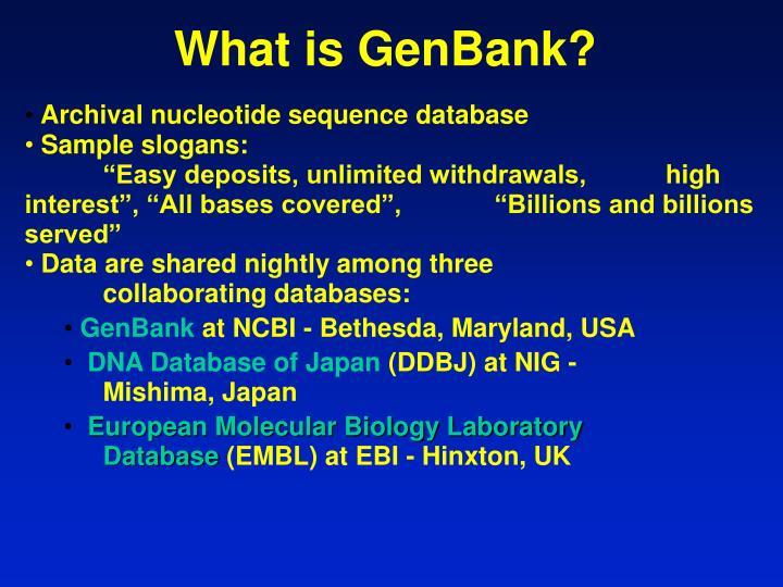 What is GenBank?