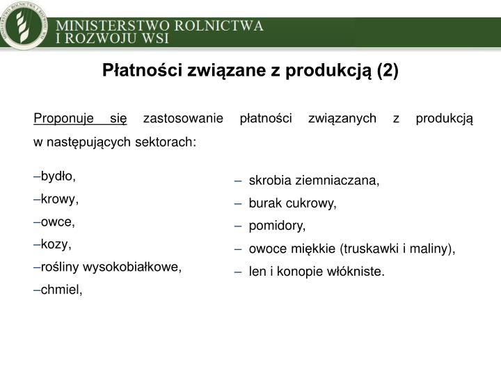 Płatności związane z produkcją (2)