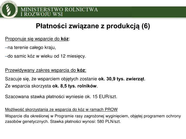 Płatności związane z produkcją (6)