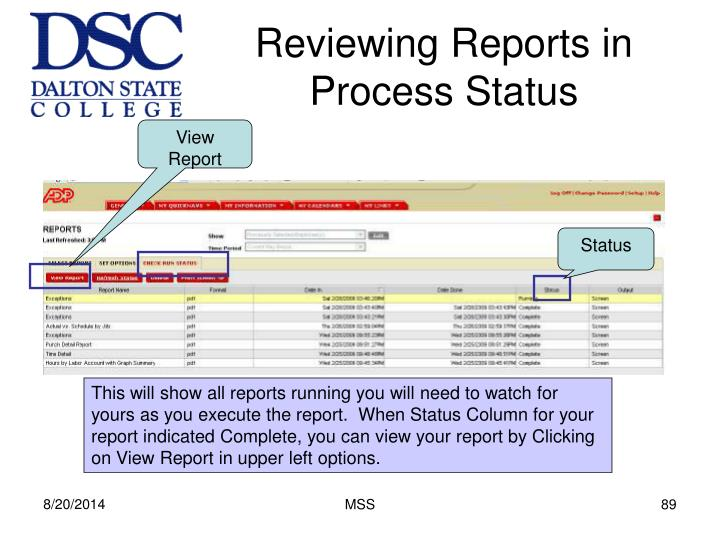 Reviewing Reports in