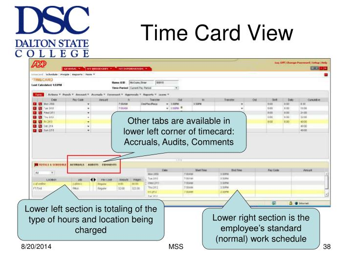 Time Card View