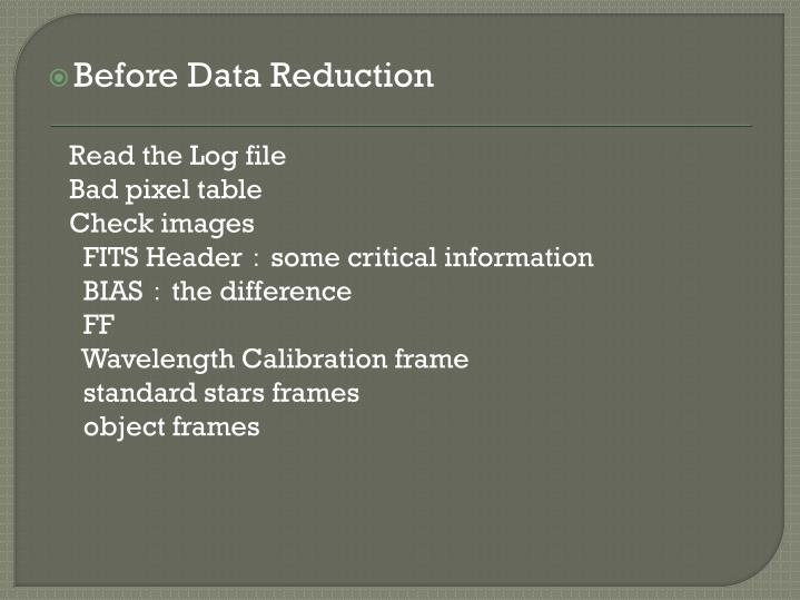 Before Data Reduction
