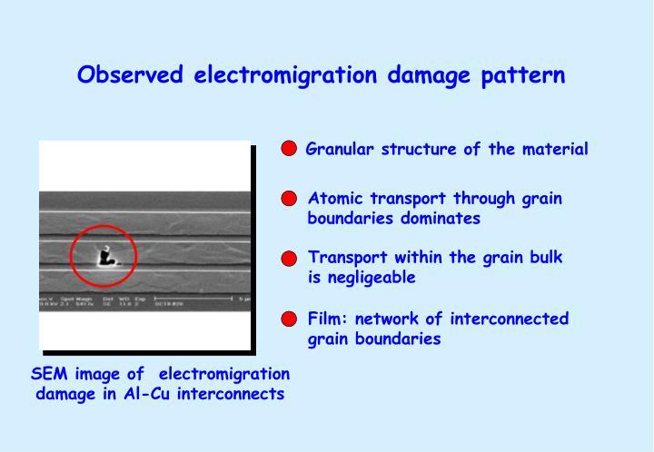 Observed electromigration damage pattern