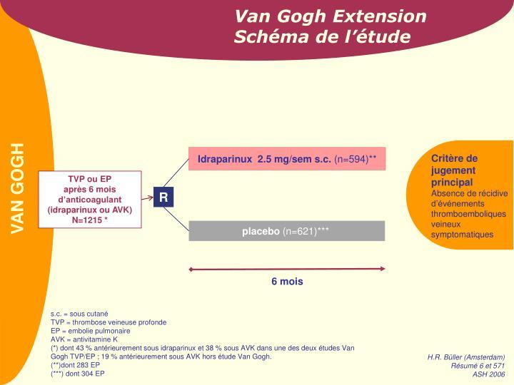 Van Gogh Extension