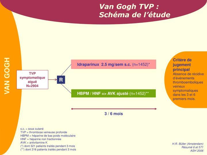 Van Gogh TVP :