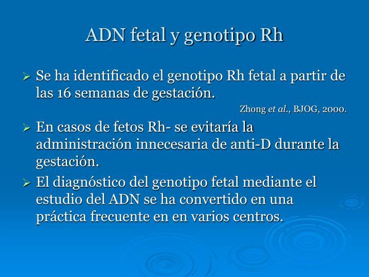 ADN fetal y genotipo Rh