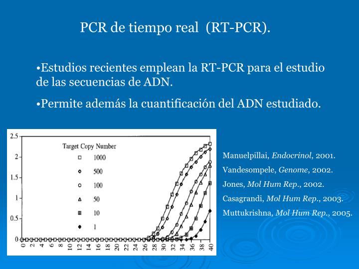 PCR de tiempo real  (RT-PCR).