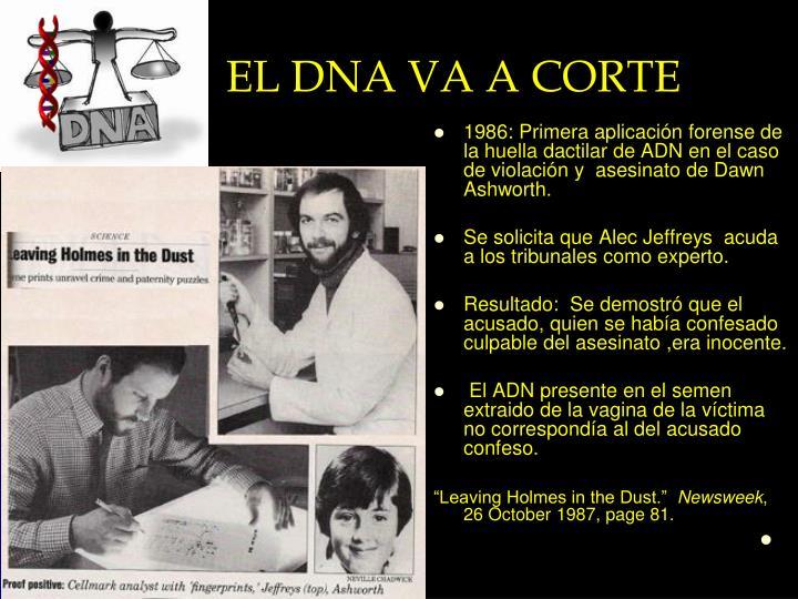 EL DNA VA A CORTE