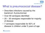 what is pneumococcal disease