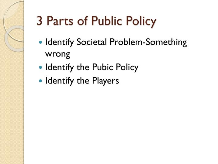 3 Parts of Public Policy