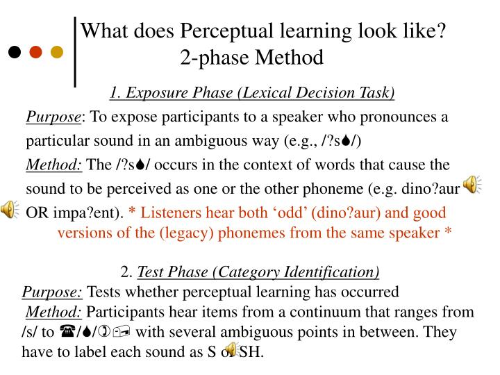 What does Perceptual learning look like?