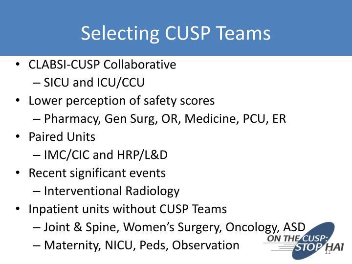 Selecting CUSP Teams