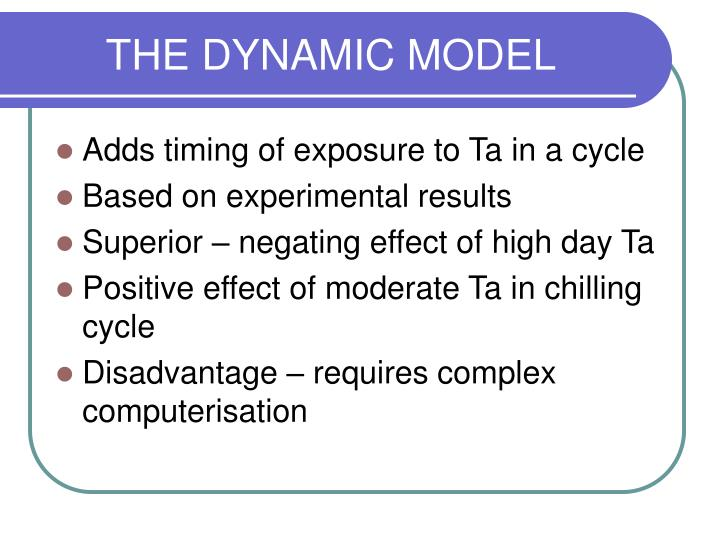 The dynamic model