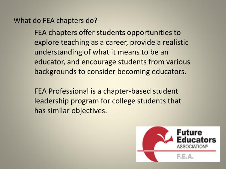 What do FEA chapters do?