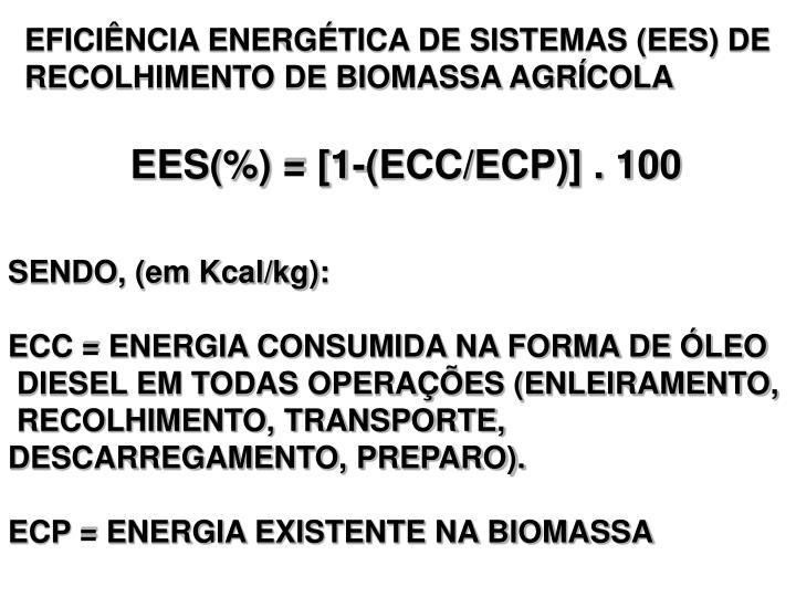 EFICIÊNCIA ENERGÉTICA DE SISTEMAS (EES) DE