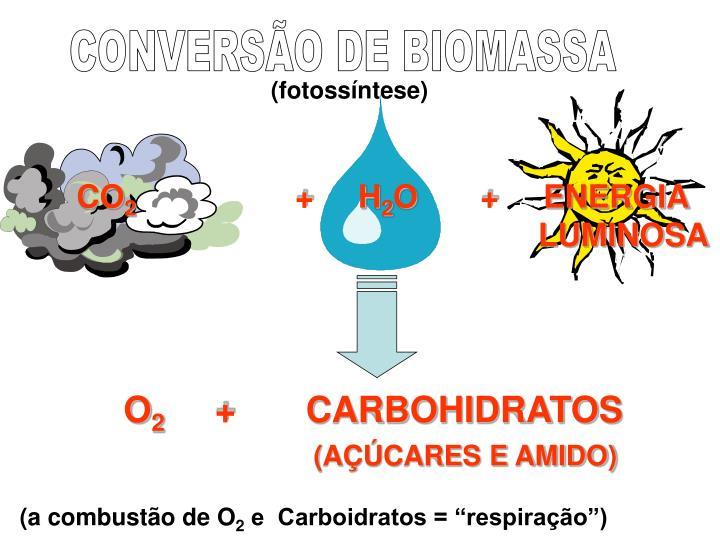 CONVERSÃO DE BIOMASSA