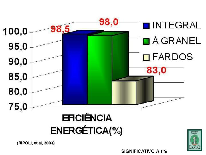 (RIPOLI, et al, 2003)