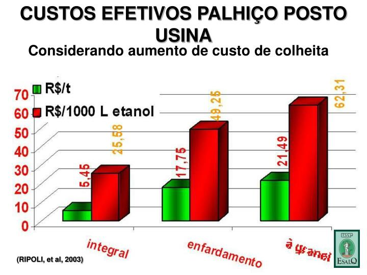 CUSTOS EFETIVOS PALHIÇO POSTO USINA