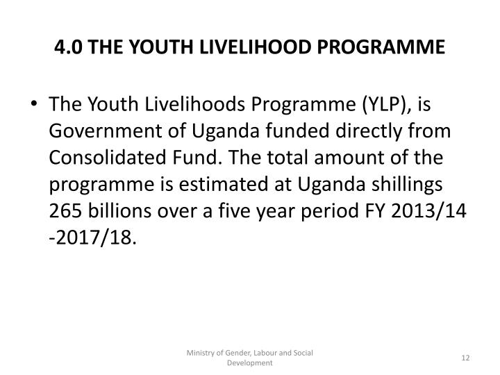 4.0 THE YOUTH LIVELIHOOD PROGRAMME