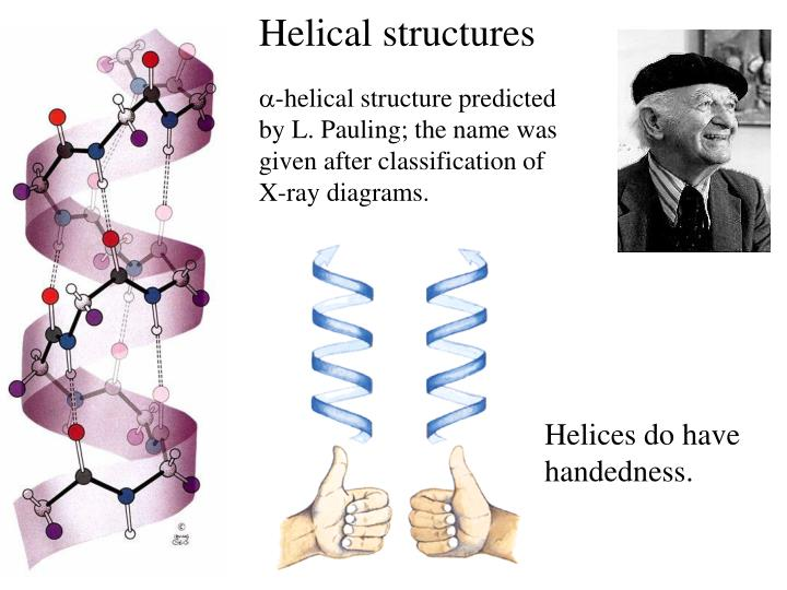 Helical structures