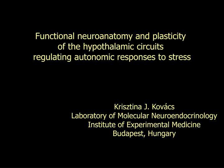 Functional neuroanatomy and plasticity
