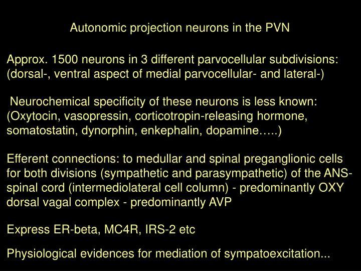 Autonomic projection neurons in the PVN
