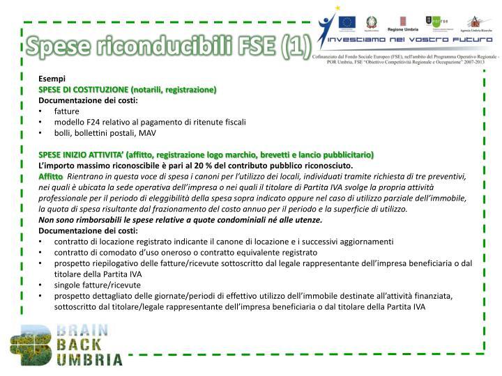 Spese riconducibili FSE (1)