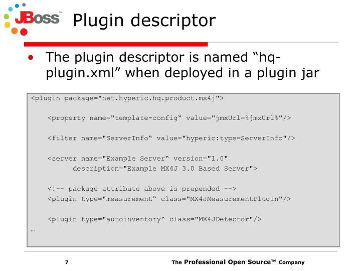 Plugin descriptor