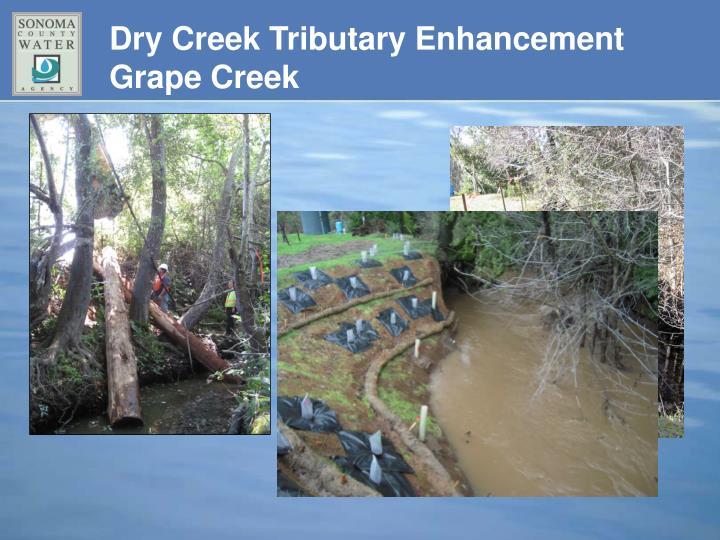 Dry Creek Tributary Enhancement Grape Creek
