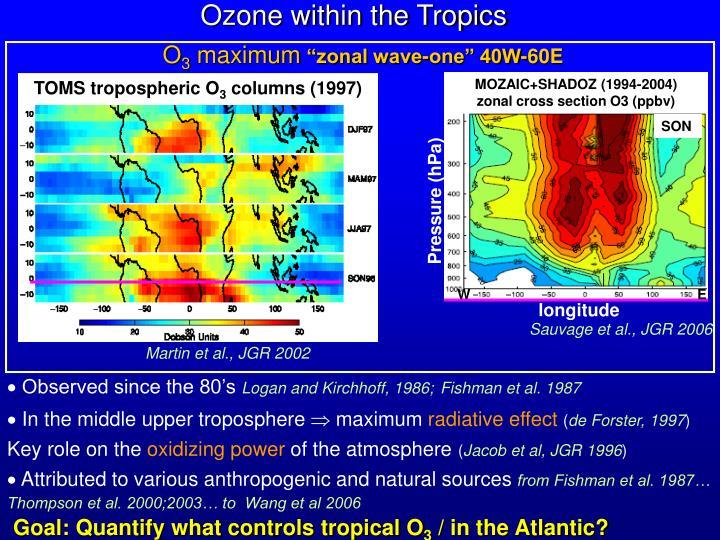 Ozone within the Tropics