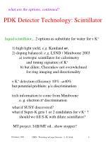 pdk detector technology scintillator