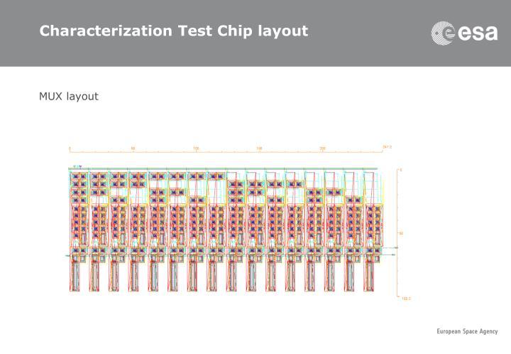 Characterization Test Chip layout