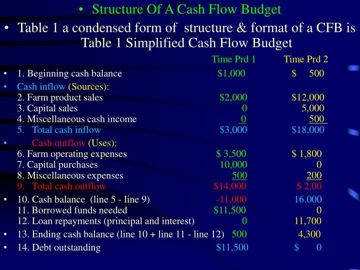 Structure Of A Cash Flow Budget